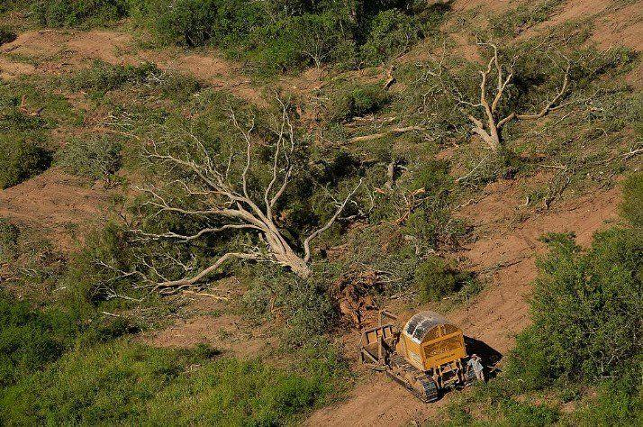El modelo productivo agroalimentario, el eje de la Cumbre Climática de Rosario