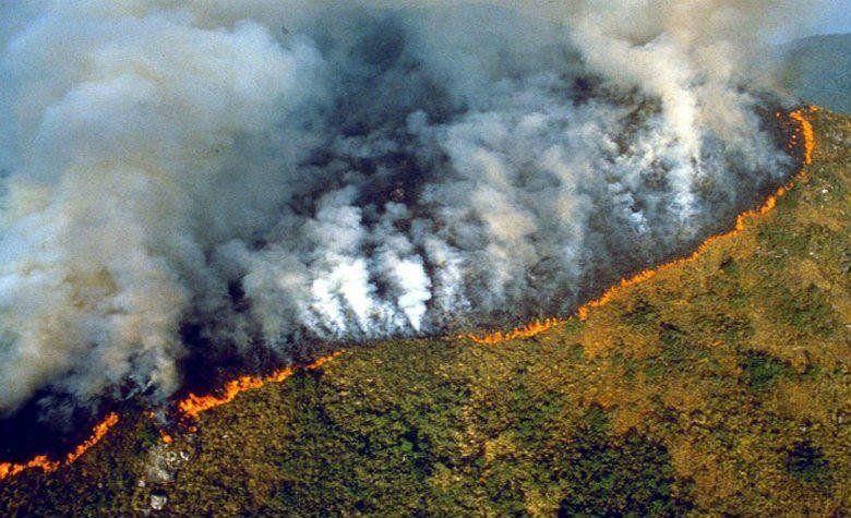 ¿Qué está pasando con los masivos incendios en el corazón del Amazonas y por qué son tan graves?