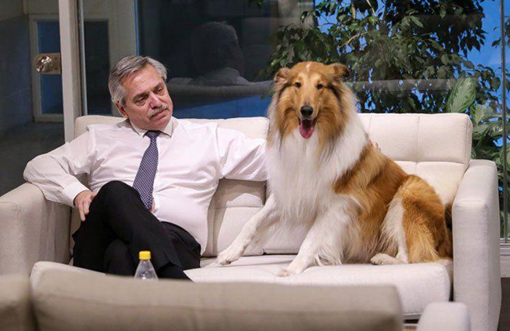 Dylan F. dice sus verdades sin pelos en la lengua: entrevista exclusiva al perro nacional y popular