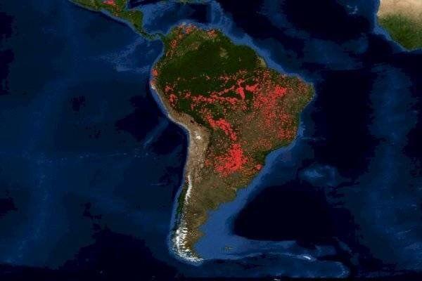 Fuego en el Amazonas: tres mapas muestran la impactante dimensión de los incendios