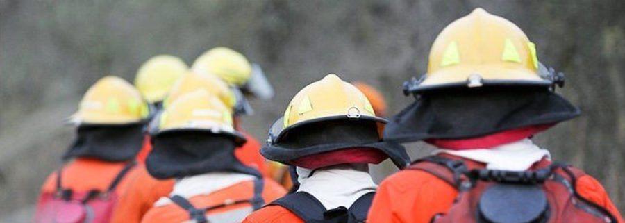 Ocho bomberos voluntarios santafesinos viajarán a Brasil para combatir el fuego en el Amazonas