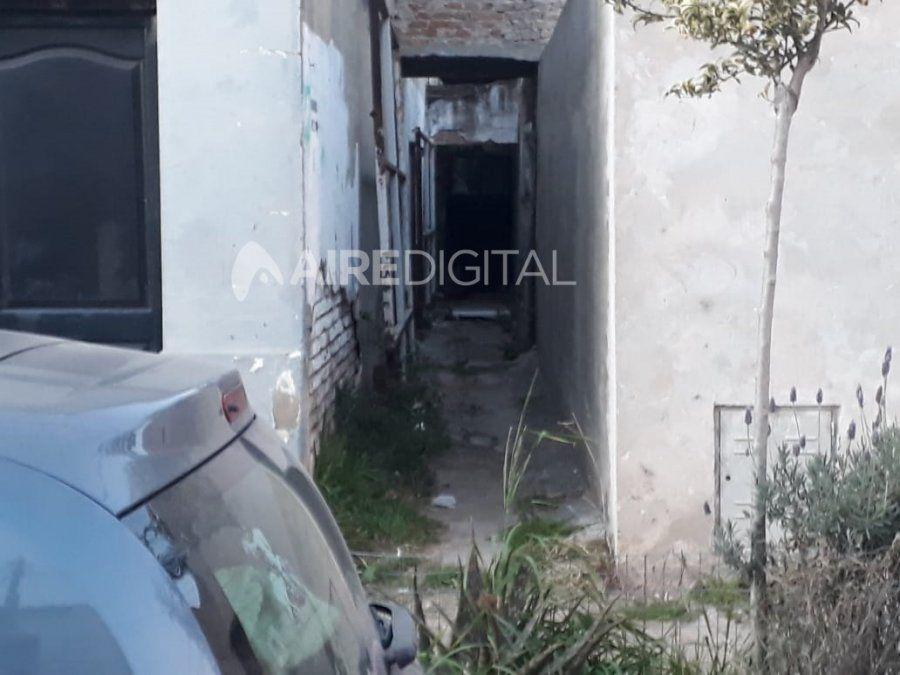 Encontraron un Aguará Guazú, lo acorralaron y terminó en un pasillo de una casa de Fomento 9 de julio