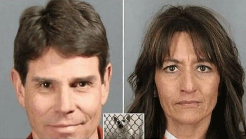 Sometían sexualmente a su perro, éste se volvió agresivo y el juez tomó una tremenda decisión
