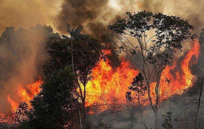 """Amazonas: el """"pulmón del planeta"""" arde entre la explotación productiva y la inacción del gobierno brasileño"""
