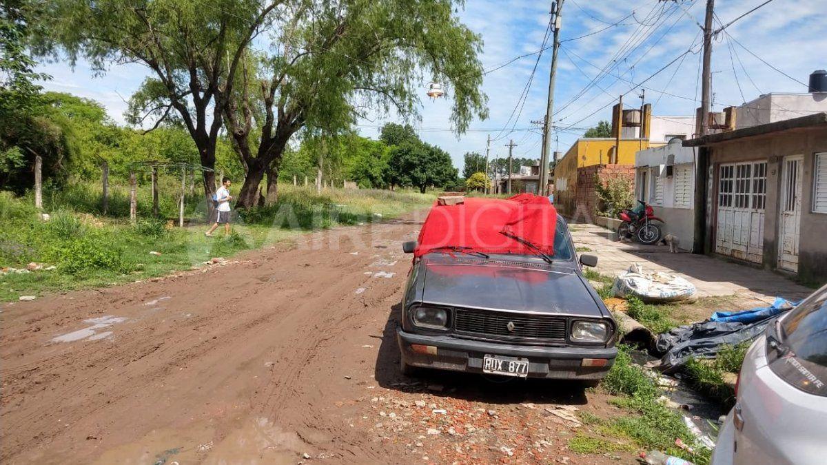 Invasión de avispas Camachui en el barrio de la granja La Esmeralda - Aire de Santa Fe - La Gran Radio