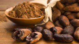 este es el inesperado origen del chocolate y el primer lugar donde se cosecho
