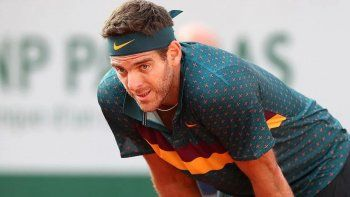 Juan Martín del Potro se bajó del partido exhibición ante Roger Federer