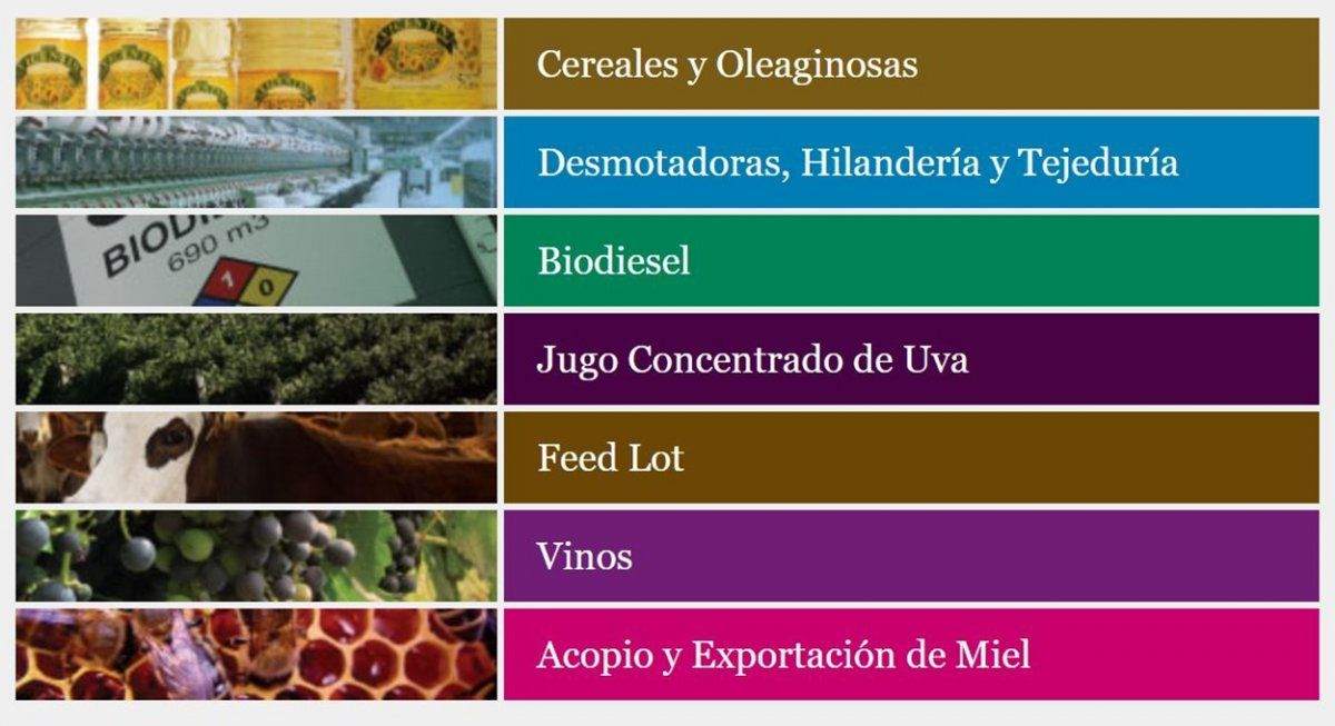 Todos los rubros en los que tiene participaciónel grupo Vicentín, según el sitio web de la empresa.