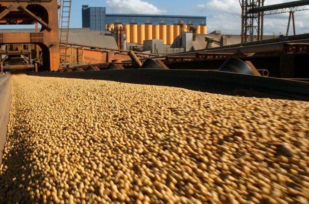 Vicentín, una de las principales agroexportadoras del país, entró en cesación de pagos y hay preocupación en el sector