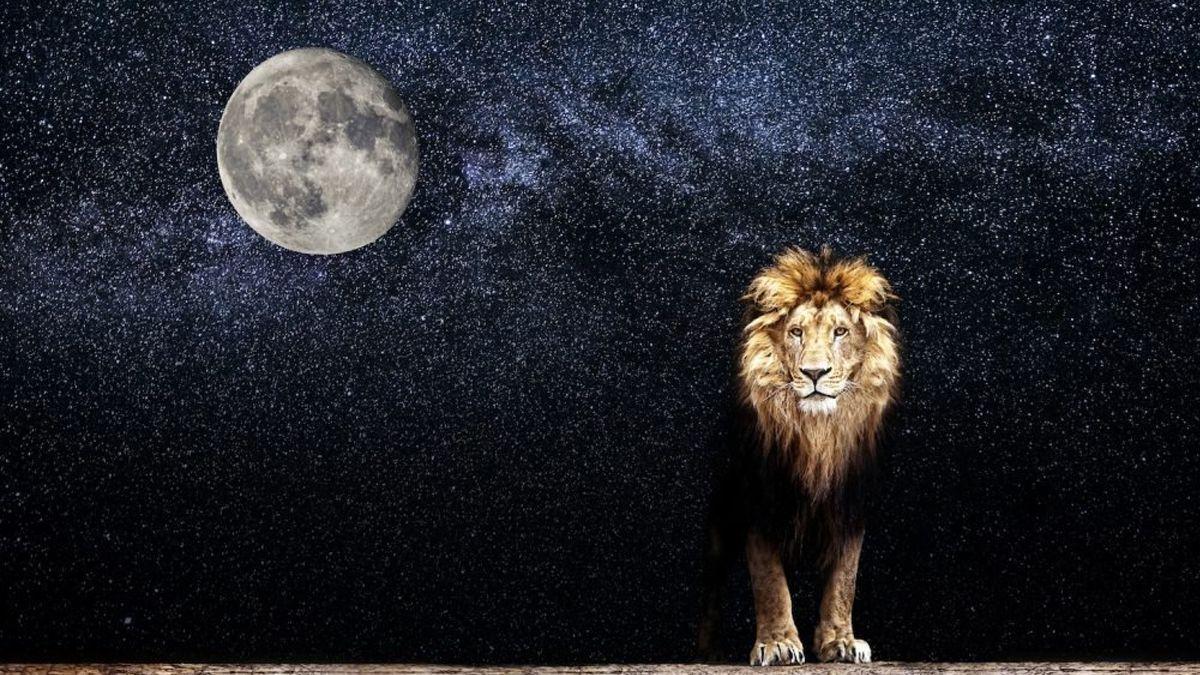 Emociones a flor de piel y reflexiones llegarán a al vida de los signos por la Luna en Leo