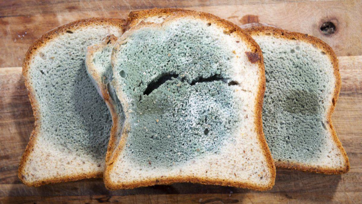 Los riesgos y consecuencias de oler alimentos con moho