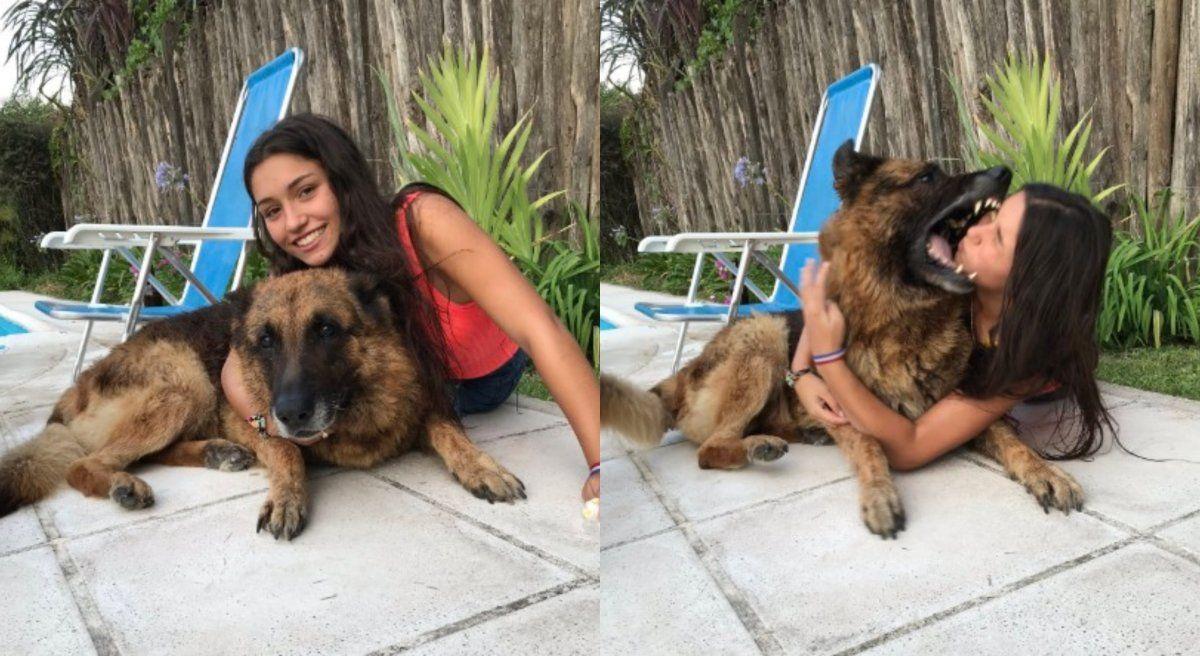 Una joven quiso sacarse fotos con su perro y terminó siendo violentamente mordida