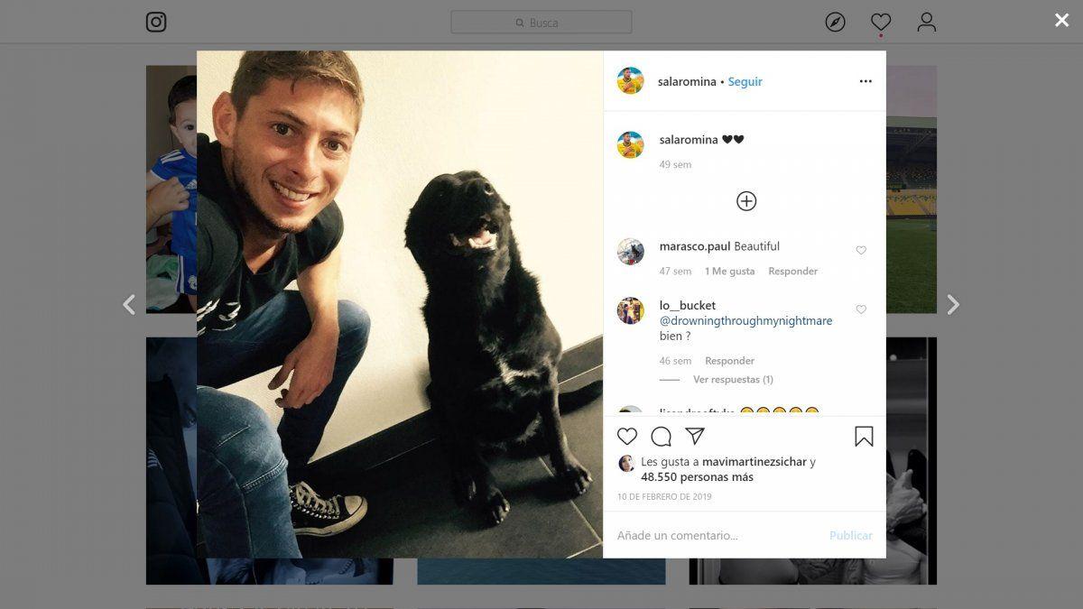 Nala, la perrita de Emiliano Sala a un año del fallecimiento de su dueño