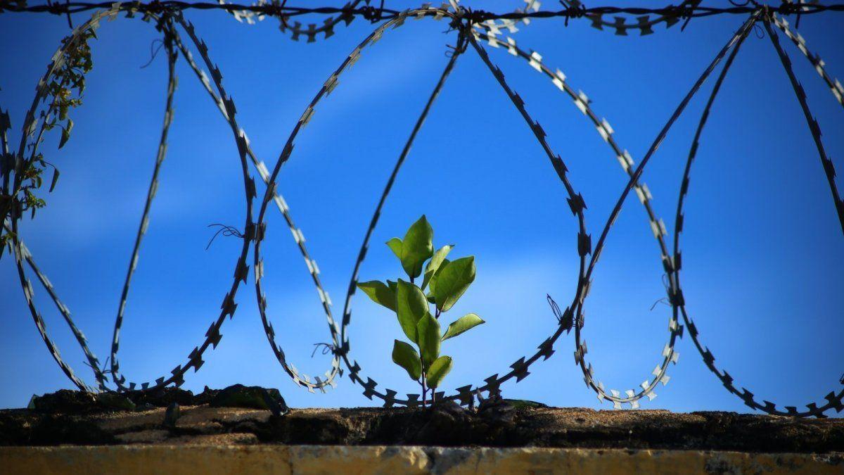 ¡Saludos desde Tailandia!: un recluso se fuga de una cárcel belga y envía una postal a los directores del penal