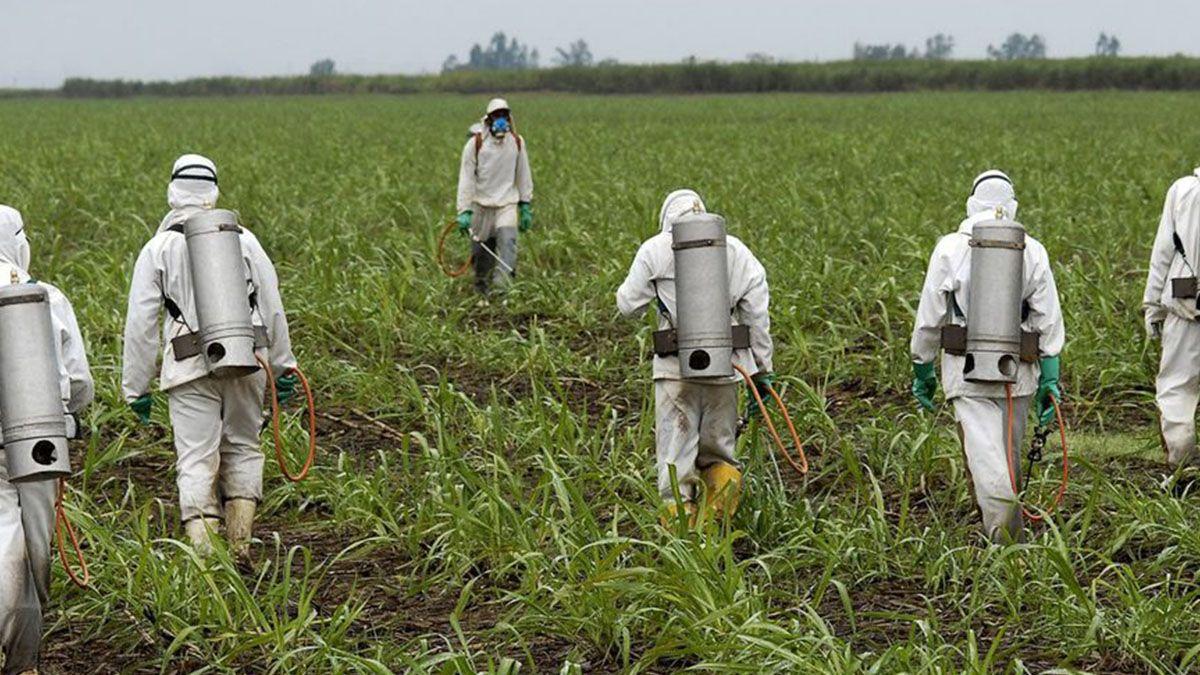 Prohíben pulverizar con agroquímicos a menos de 800 metros del casco urbano de Sastre