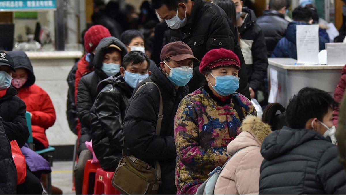 Coronavirus: probarán las primeras vacunas dentro de cuatro o cinco meses, dijo la OMS