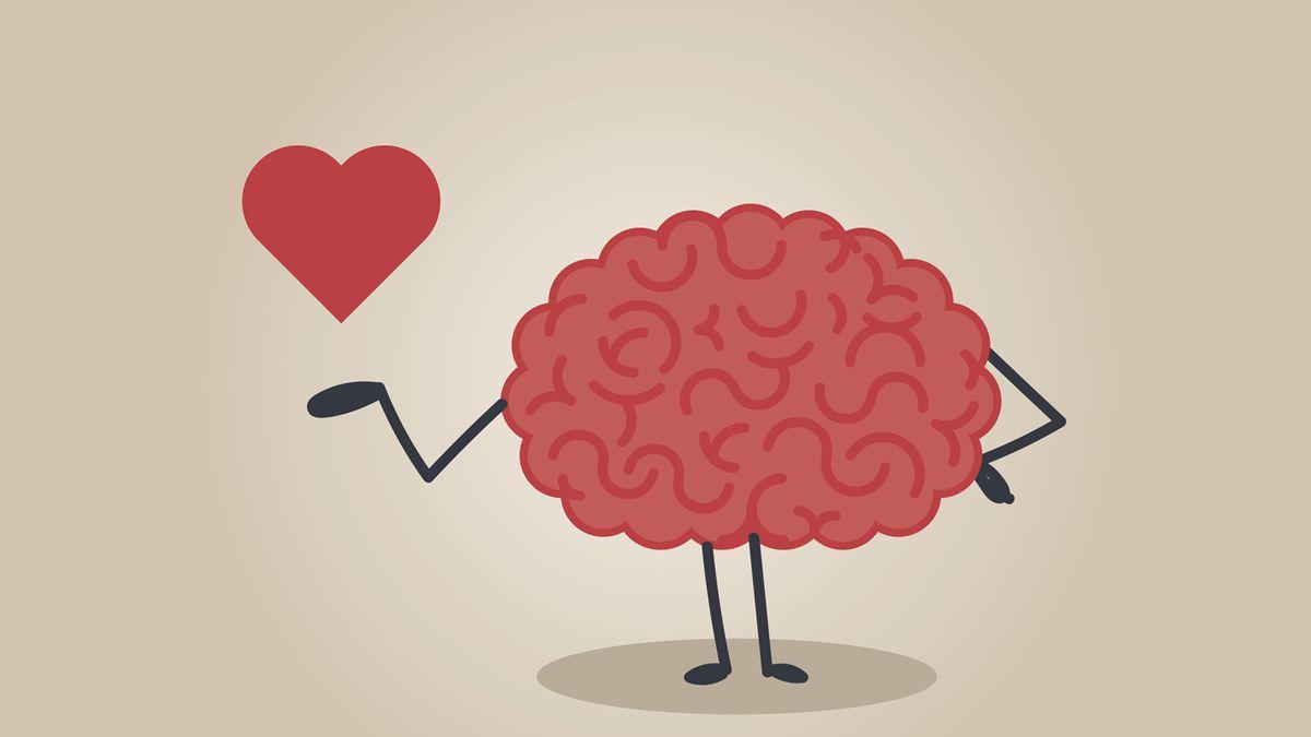 ¿Qué pasa en el cerebro cuando nos enamoramos?