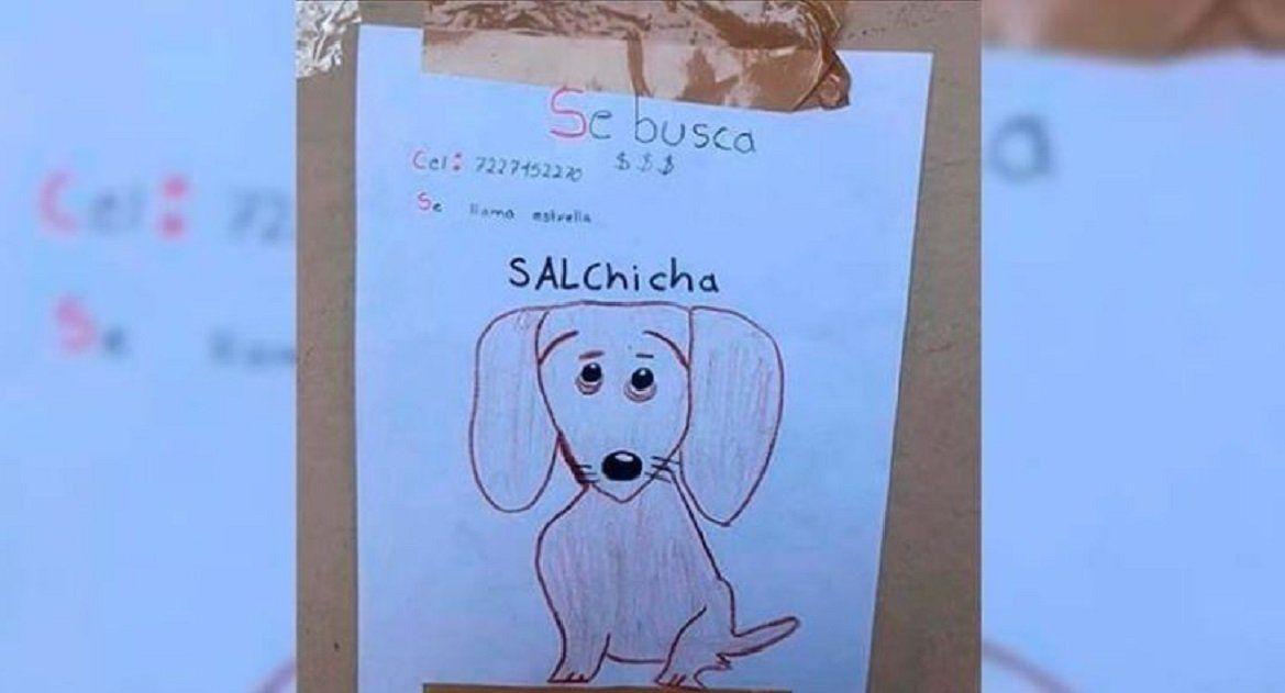 Un nene de 11 años perdió a su mascota, no tiene fotos y la busca con un dibujo