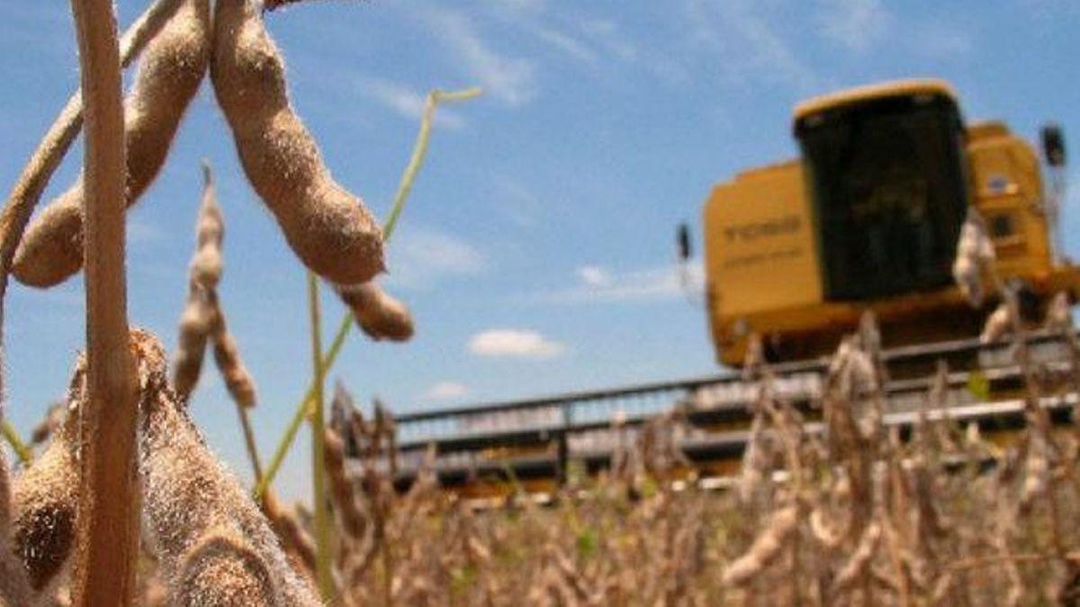 Coronavirus: la Provincia implementará corredores seguros para el transporte de Cereal