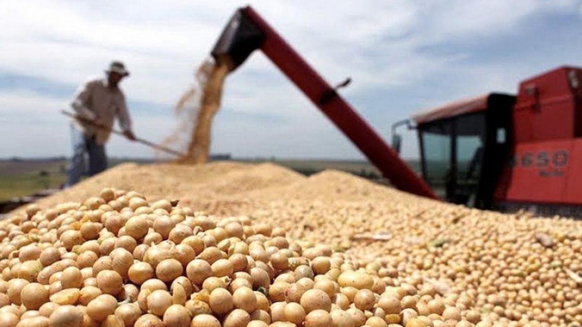"""China compró soja deEstados Unidos""""a un ritmo vertiginoso durante dos meses"""", lo que aumenta la probabilidad de exportaciones estadounidenses récord al país asiático durante el próximo año."""