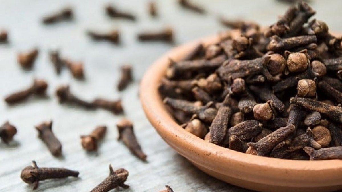 Tips naturales para acabar con las moscas en el hogar