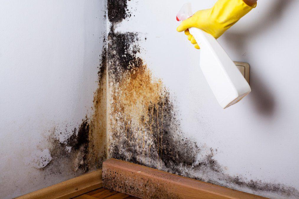 Cómo deshacerse de la humedad del hogar.