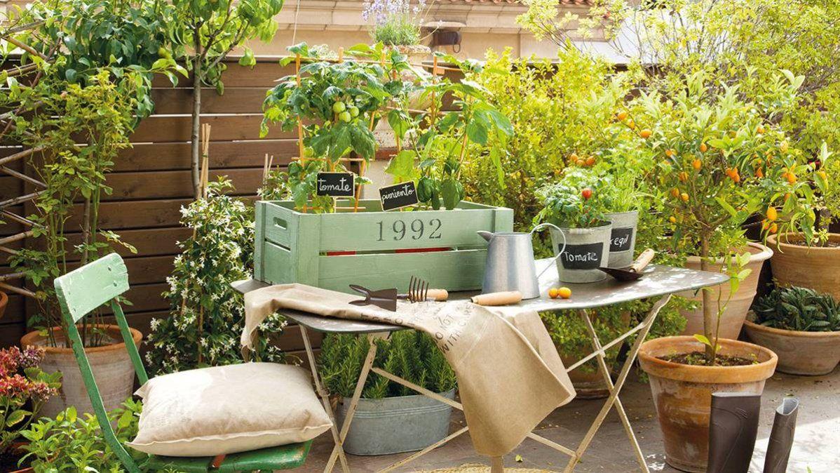 Jardinería en casa