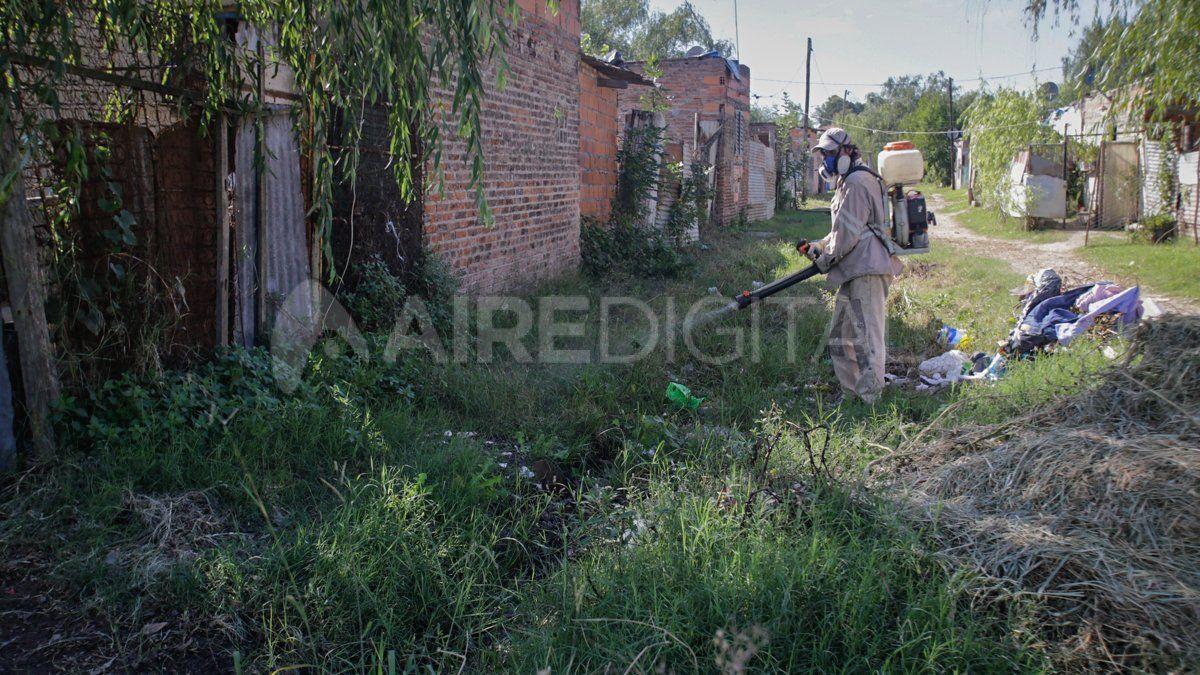 Las autoridades insisten en mantener las medidas de prevención contra el dengue