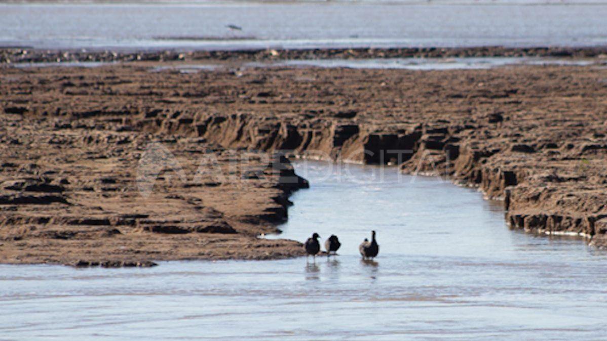 La bajante dejó ver el lecho de la Laguna Coronda.