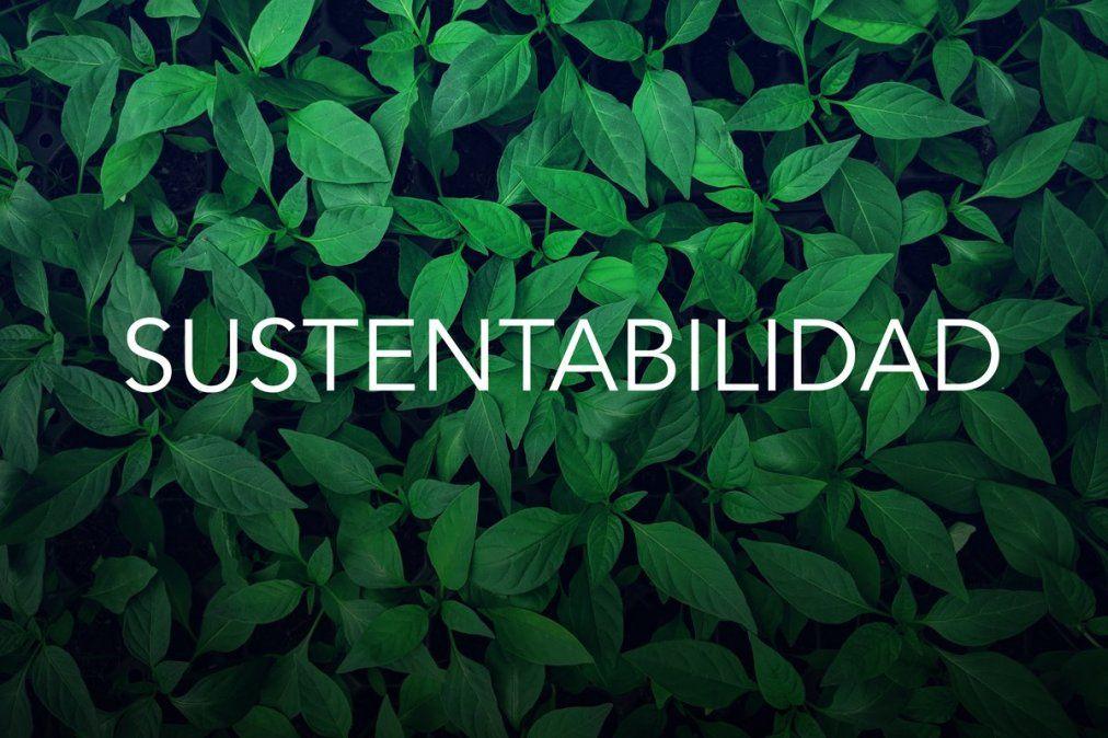 Tener un hogar sustentable es mas fácil de lo que creemos.