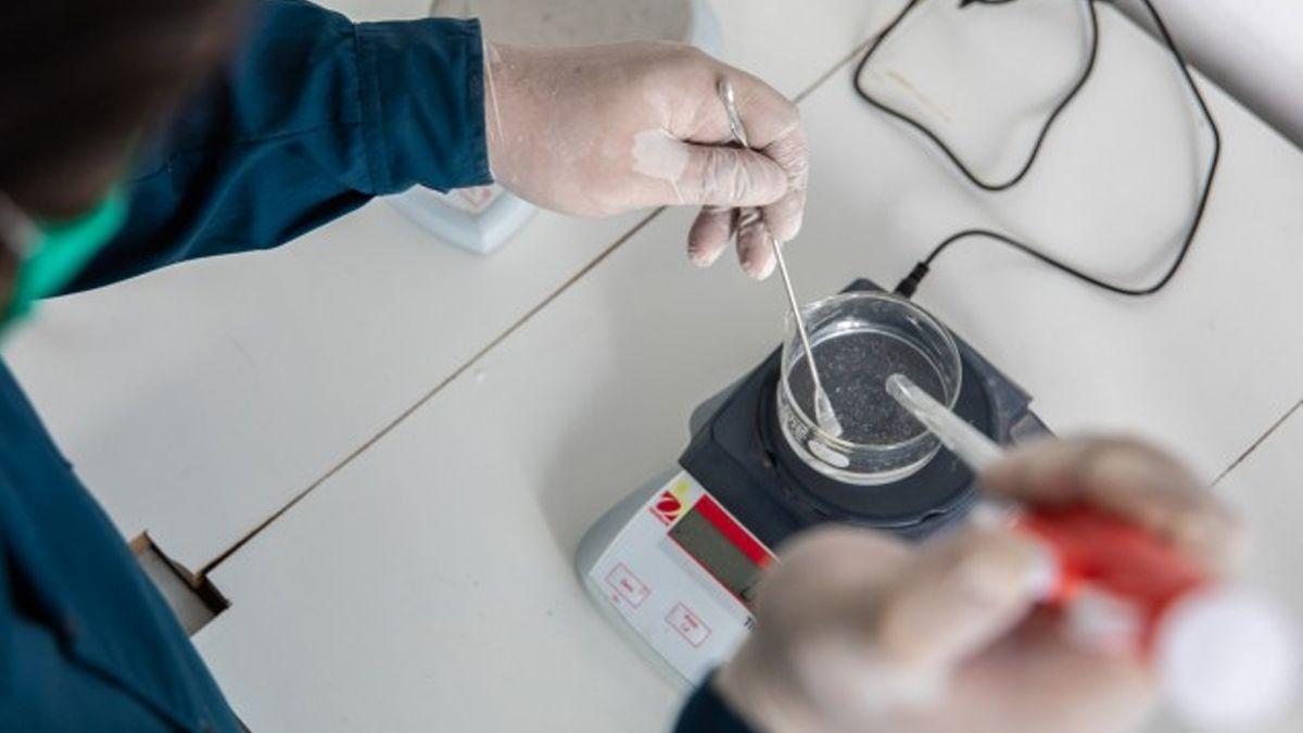 Cinco proyectos de investigadores santafesinos fueron seleccionados para aportar respuestas ante la pandemia