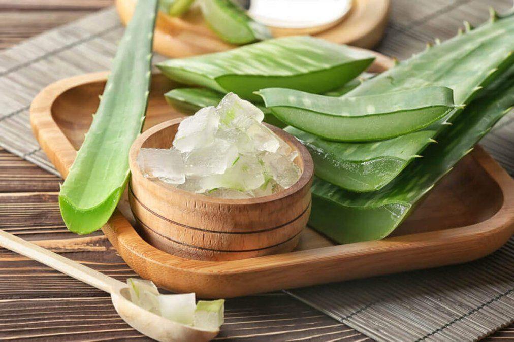 Aloe vera para tratar el acné de manera natural.
