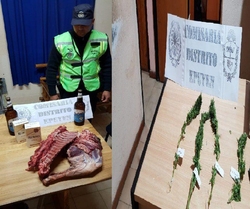 Secuestro de plantas de marihuana en Epuyen.