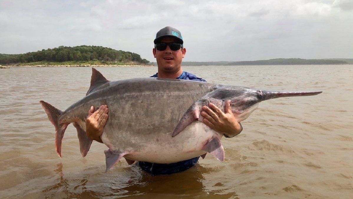 El pescador James Lukehart sostiene el pez espátula americano con el que estableció un nuevo récord.