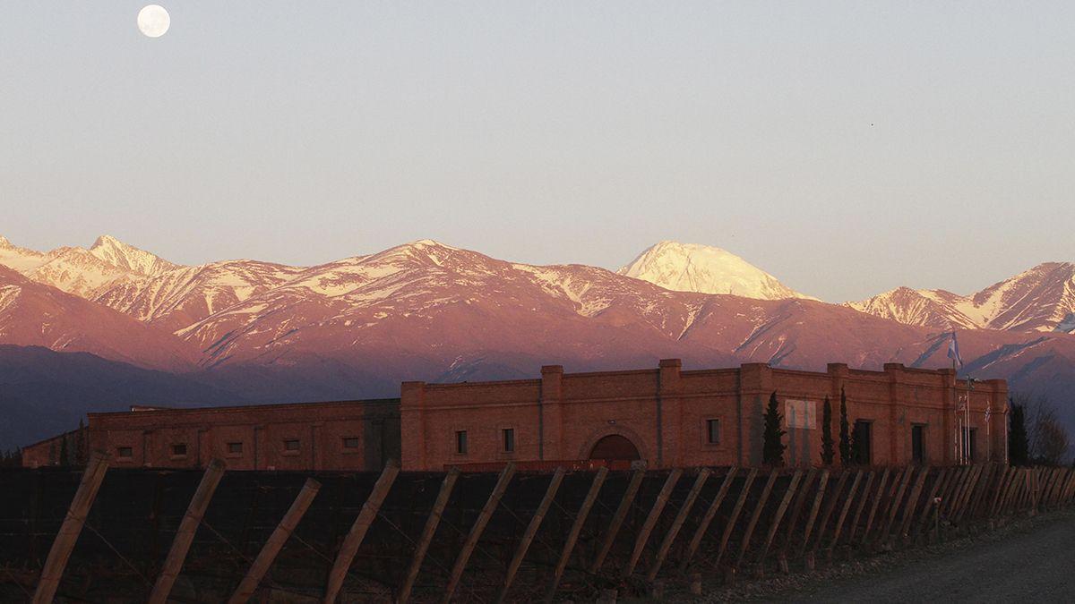 Mendoza será sede de Grandes Capitales del Vino en 2022