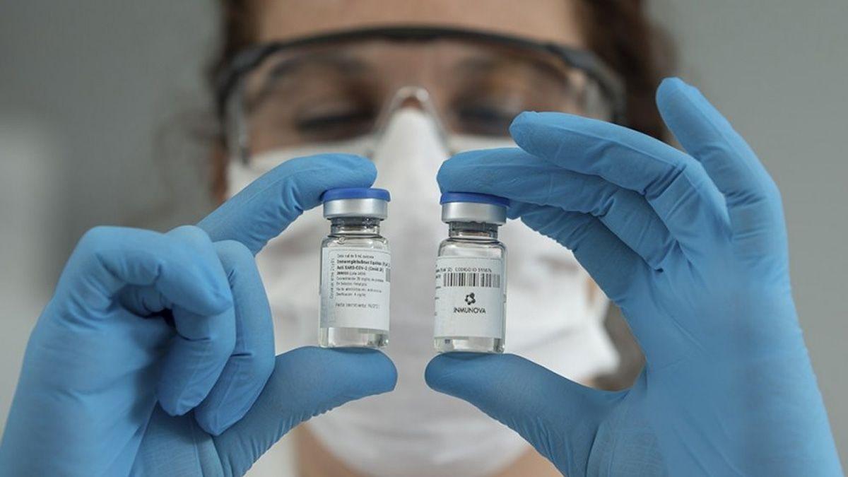 Fernández recibió a científicos que inician ensayos clínicos con suero equino para tratar coronavirus
