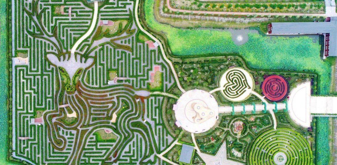 Yancheng Dafeng Dream Maze