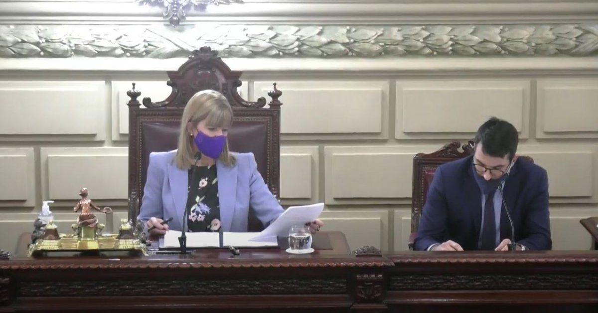La vicegobernadora Alejandra Rodenas encabezó la sesiónvirtual.