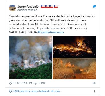 ¿Qué está pasando con los incendios en el Amazonas y por qué son tan graves?