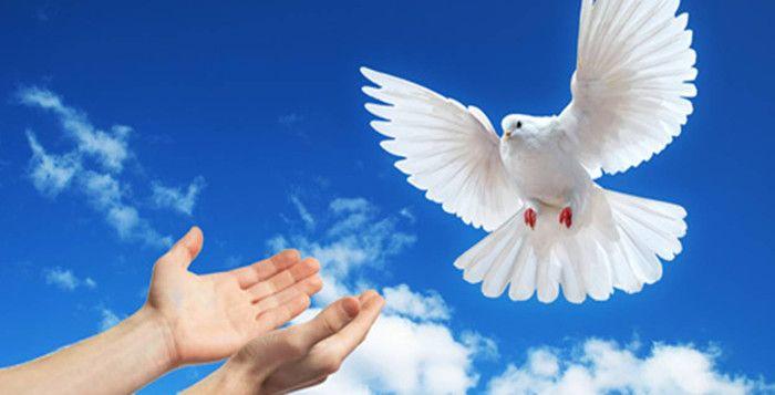 Resultado de imagen para dia internacional de la paz 2019