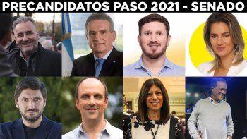 Estos son los principales candidatos que se enfrenarán en las Paso para posicionarse como candidatos para las tres bancas que renueva Santa Fe en el Senado.