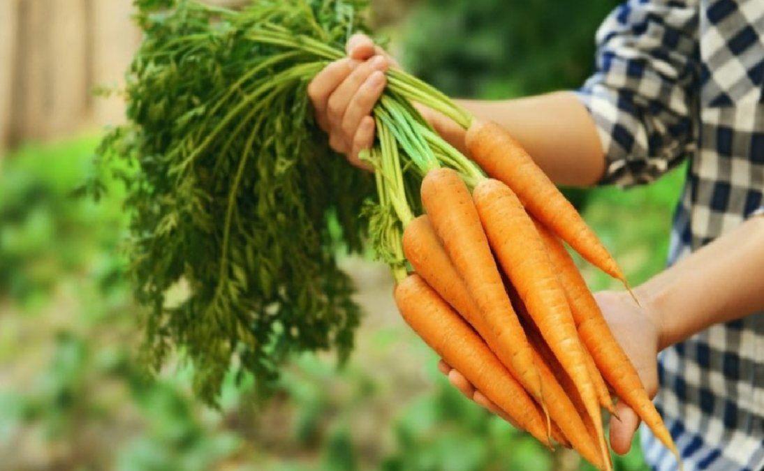 Motivos por los que debes comer zanahoria cruda