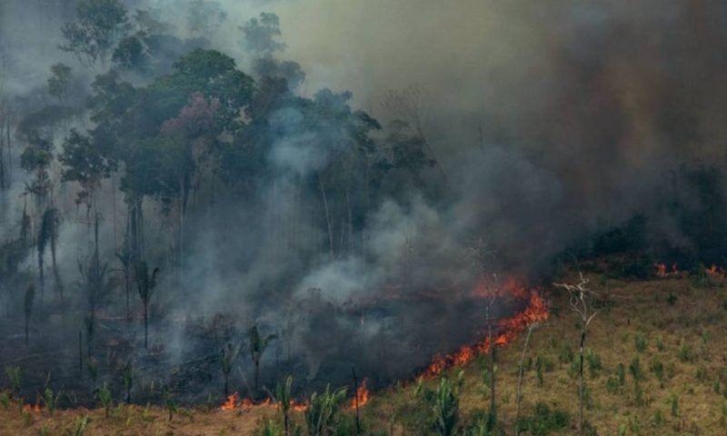 La deforestación potencia el cambio climático y se repiten eventos extremos como inundaciones