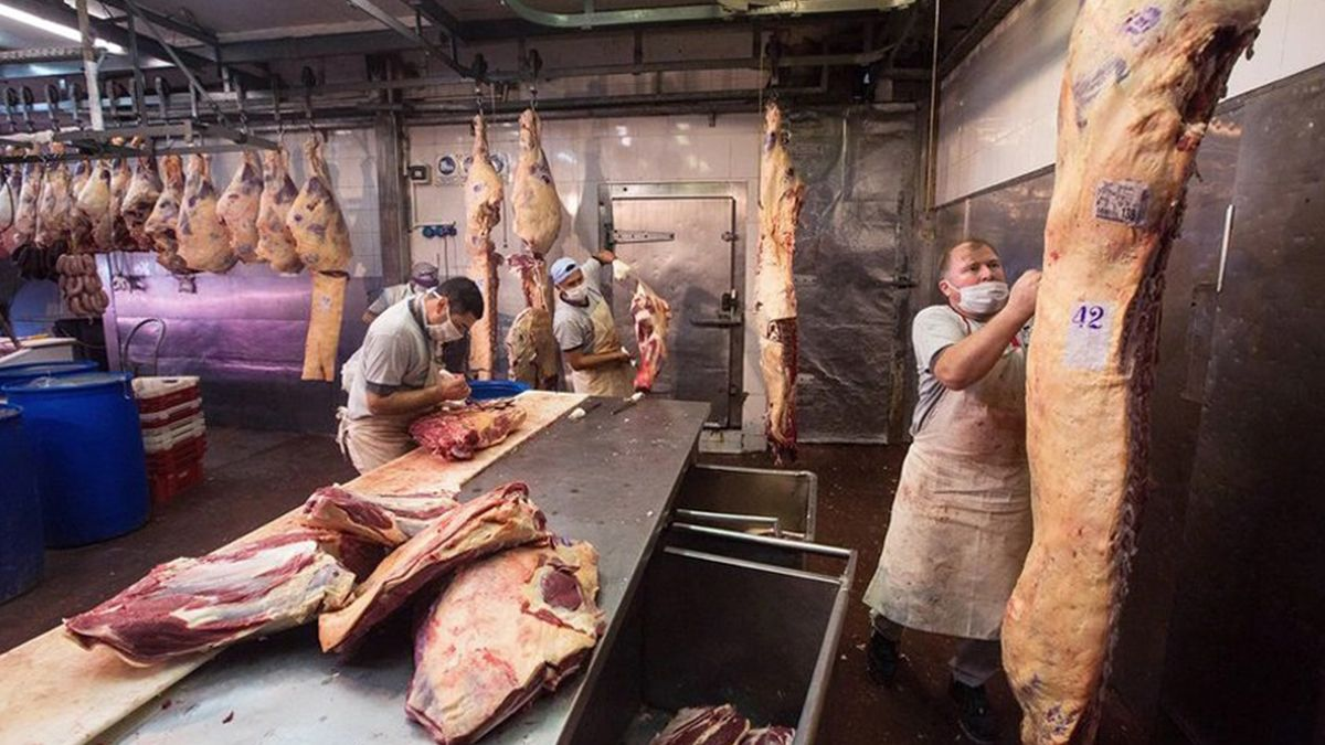 El Gobierno tiene suspendidas el 50% por ciento de las exportaciones de carne