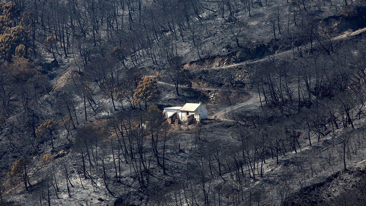 Parte de las zonas arrasadas por el incendio de sexta generación en el sur de España.
