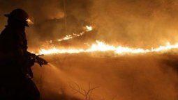 Los incendios en Córdoba están arrasando con la biodiversidad. Aseguran quela recuperación de losdaños a la flora y la faunadependerá de las condiciones climáticas y de las accionesdel Estadoacorto y mediano plazo.