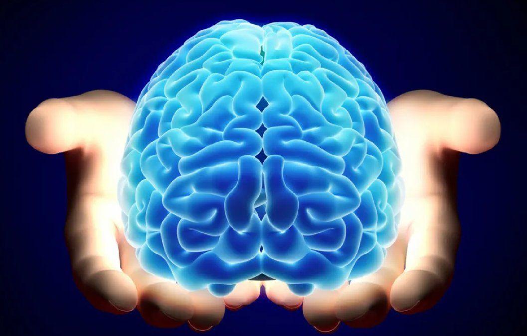 Hábitos para mejorar la salud del cerebro