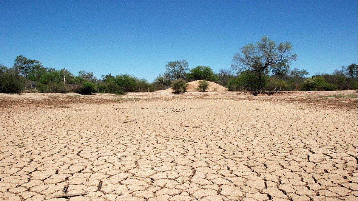 La sequía generó pérdidas tanto en la agricultura como en la ganadería.