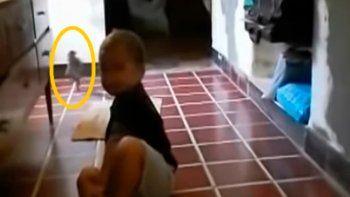 Un bebé argentino gateaba en la cocina de su casa y atrás apareció un duende