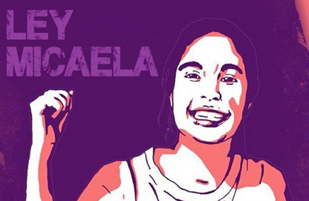 La Ley Micaela fue establecida en Santa Fe a través del decreto número 192 firmado por el gobernador Omar Perotti.